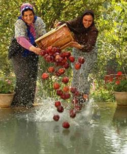 Pelicula irani Mirkarimi